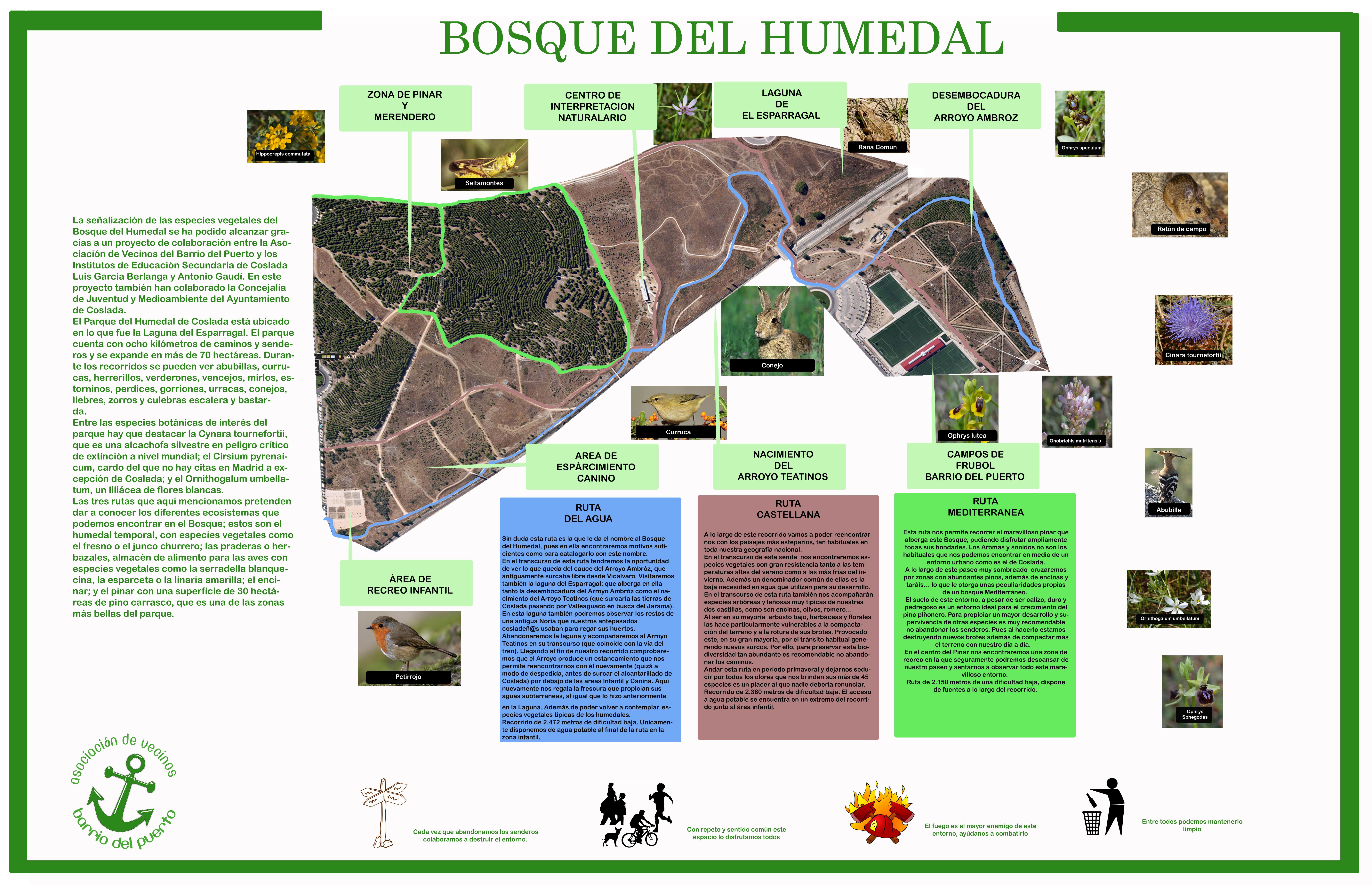 Plano Parque Del Retiro Mapa.No Te Pierdas Nada En Tus Paseos Por El Humedal Barrio Del